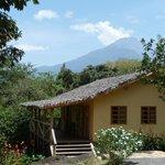 Cottage II