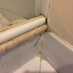 Mold and damage in bathroom