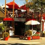 Flava Cafe & restaurant