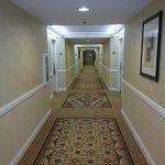 Corridor - floor 4