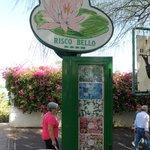 Entrada a la cafeteria Risco Bello y de los jardines acuaticos