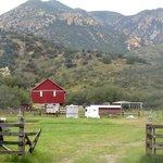 Amish barn and horse facilities