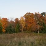 A view of the fall colors on the Chanticleer property