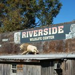 Riverside Wildlife Center
