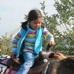 Granddaughter riding horse