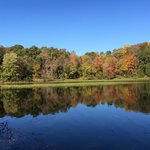 Autumn colours at Lake Fairfax