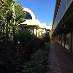 Corredor do hotel bem arborizado