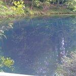 Cenote der Schwäbischen Alb