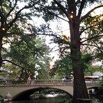 Scenery Along the River Walk