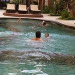 Pool in stage 3 has 3 spas