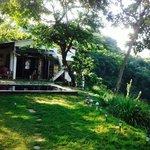Garden oscar's place