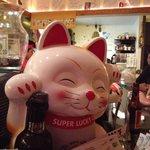 Lucky Cat an der Bar