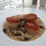 seared diver scallops and mushroom risotto