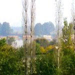 View from room @ Paradise Home stay Kashmir