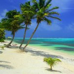 Best Snorkle Beach on Ambergris Caye