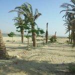 Oasis de Al Fayum