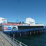 Der Yachtclub ohne Hafen