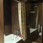 Executive Bathroom (Bathtub & Shower)