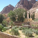 Foto de Elegant Voyage Day Tours - Sharm el Sheikh
