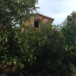 Photo de Le Mas des Aigras