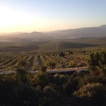 Views of olive farms from walled town of ubeda
