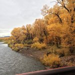 rio grande river just down from lodge