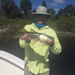 One of many Snook