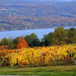 Autumn along the Wine Trail - 2014 (C) John Kacz