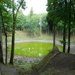 Озеро на дне кратера