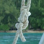 Reef Knot?