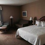 Hilton Garden Inn Cincinnati/Sharonville Foto