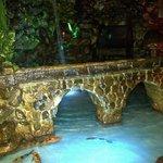 Puente del acuario entrada