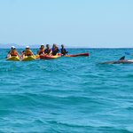 Go Sea Kayak at Byron Bay