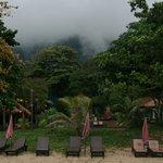 The fog....