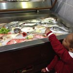 Fish selection