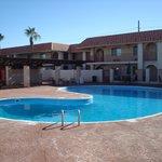 Trevlig stor pool
