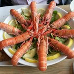 Langoustines on a bed of salad
