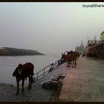 Gomti Ghat-Muralitharan photo