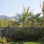 Photo of Adisiya Homestay