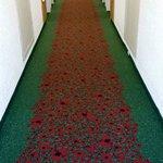 Corridor on Floor 3