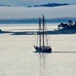 A wooden two-masted schooner sails through Oak Bay