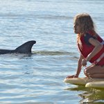 The Guide's Grand Daughter....trying to pet a Dolphin