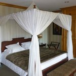 Canopy bed in the Savannah