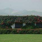 Foto de Los Ficus Casa Hacienda