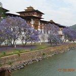 The Dzong