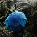 Rainy season is a great time to visit