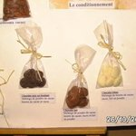 On apprend d'où vient le chocolat, les 3 sortes...