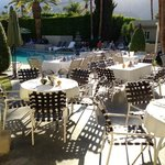 outdoor holiday dining