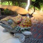El Jardin Tequila Bar & Restaurant, Santana Row, San Jose, Cca