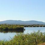 Agricampeggio Lago Le Tamerici Foto